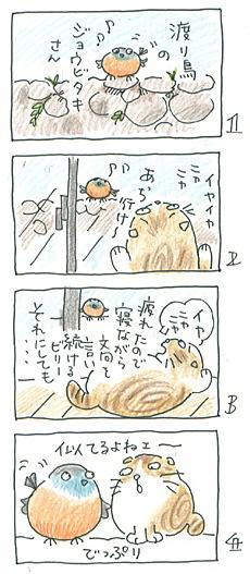 jyobitaki