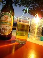 Beer10231