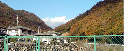 Idani