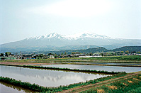 Chyokai