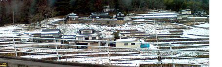 Yukimiti