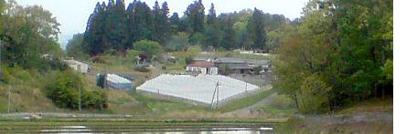Atosukosi
