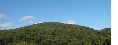 Yamakumo