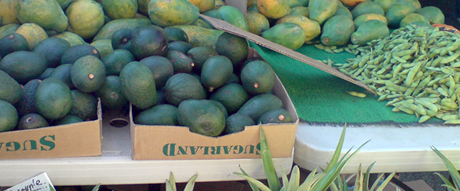 0221fruits