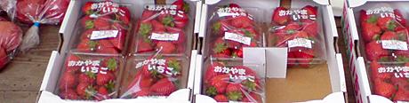 0424sberry