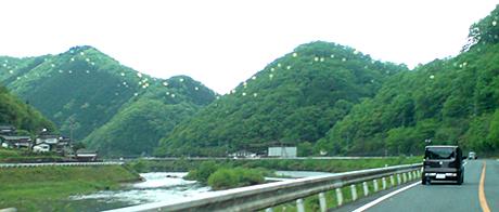 0511nariwa