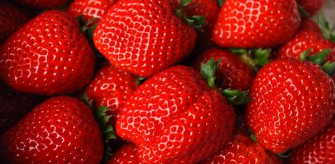 0303sberry