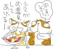 Dokumi_2