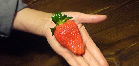 0111strawberry2