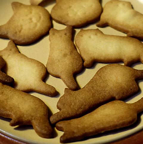 0109cookie